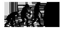 Webディレクター進化論 - キャリアアップの情報メディア